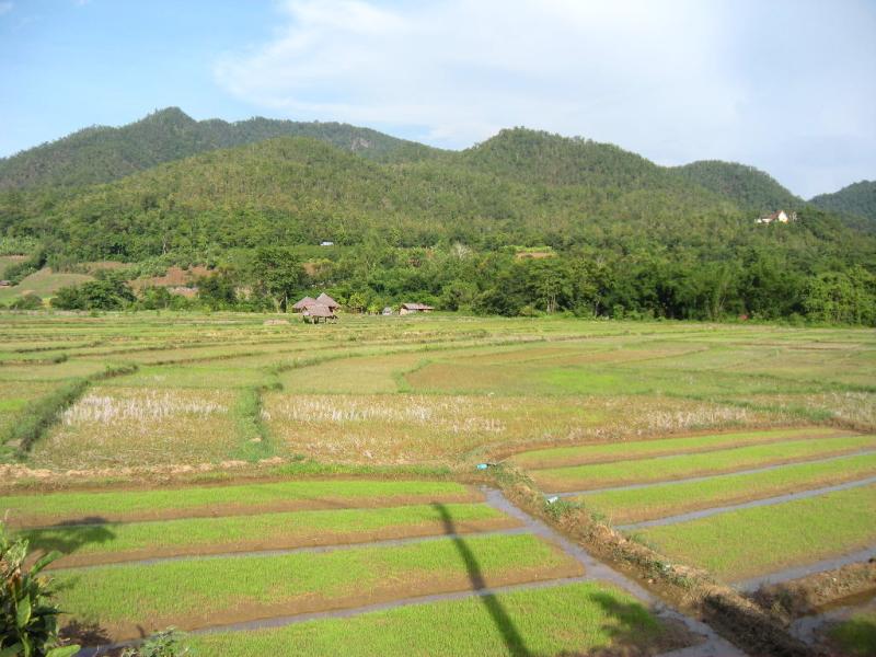 okiya-otoko1