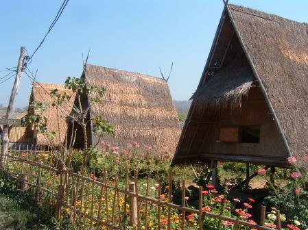 pai-thai01